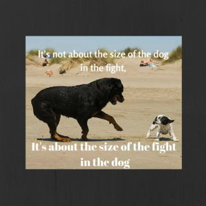 It's not about the size of the dog in the fight,