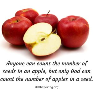 anyone-can-count-the-number-of-seeds-in-an-applebut-only-god-can-count-the-number-of-apples-in-a-seed